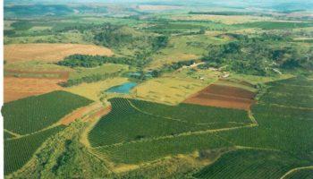 Fazenda Gloria - Santa Rita do Passa Quatro, SP