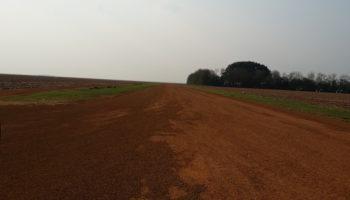 Grupo de 3 fazendas no Mato Grosso