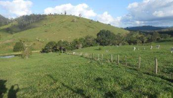 Grupo de 9 fazendas na Bahia